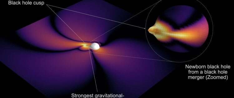 The black hole always chirps twice: Scientists find clues to decipher the shape of black holes!